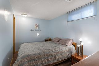 Photo 29: 31 Mchugh Place NE in Calgary: Mayland Heights Detached for sale : MLS®# A1111155