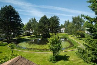"""Photo 12: 141 12233 92 Avenue in Surrey: Queen Mary Park Surrey Townhouse for sale in """"ORCHARD LAKE"""" : MLS®# R2594301"""