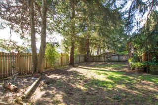 Photo 9: 38108 CHESTNUT Avenue in Squamish: Valleycliffe House for sale : MLS®# R2557673