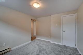 Photo 16: 4051 Hodgson Pl in VICTORIA: SE Lake Hill House for sale (Saanich East)  : MLS®# 842061
