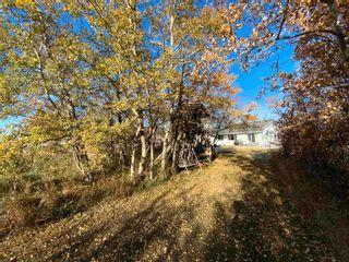 Photo 35: 76 Casa Vista Drive: Rural Sturgeon County House for sale : MLS®# E4266053