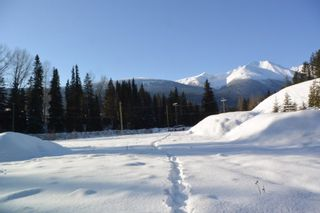 Photo 17: LOT A W 16 Highway in Smithers: Smithers - Town Land for sale (Smithers And Area (Zone 54))  : MLS®# R2533470