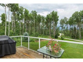 Photo 29: 14 Millarville Ridge: Rural Foothills M.D. House for sale : MLS®# C4021304
