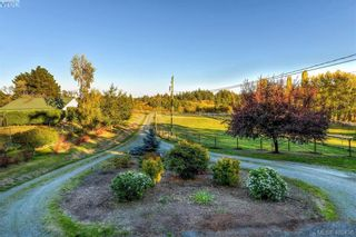 Photo 19: 4520 Markham St in VICTORIA: SW Beaver Lake House for sale (Saanich West)  : MLS®# 798977