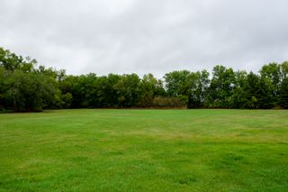 Photo 87: 43073 Rd 65 N in Portage la Prairie RM: House for sale : MLS®# 202120914