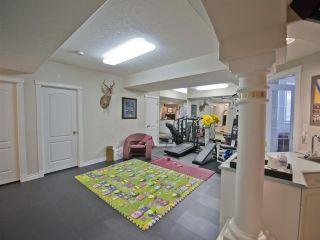 Photo 21: 223 Wilson Lane in Edmonton: Zone 22 House for sale : MLS®# E4220385