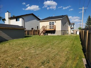 Photo 42: 23 Erin Meadows Court SE in Calgary: Erin Woods Detached for sale : MLS®# A1124454