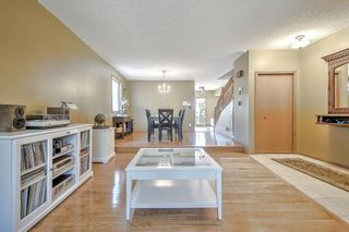 Photo 19: 44 DEERMOSS Crescent SE in Calgary: Deer Run Detached for sale : MLS®# A1018269