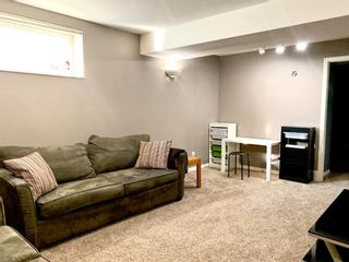 Photo 38: 53 Inverness Drive SE in Calgary: McKenzie Towne Detached for sale : MLS®# A1097454
