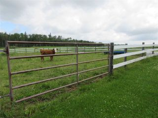 Photo 30: 27332 Sec Hwy 651: Rural Westlock County House for sale : MLS®# E4228685