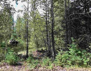 Photo 2: LOT 10 ISLAND PARK Drive in Prince George: Miworth Land for sale (PG Rural West (Zone 77))  : MLS®# R2388123