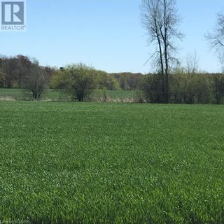 Photo 13: 2387 COUNTY RD 64 in Carrying Place: Other for sale : MLS®# 40124441