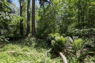 Photo 13: 1752 Little River Rd in : CV Comox Peninsula Land for sale (Comox Valley)  : MLS®# 878788