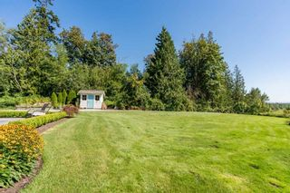 Photo 17: 9412 222 Street in Langley: Fort Langley House for sale : MLS®# R2555848