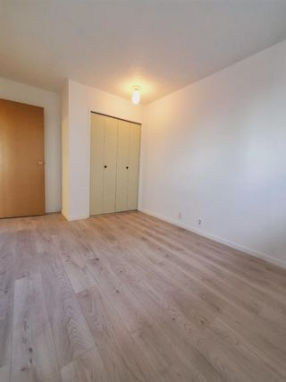 Photo 31: 10 Radcliffe Crescent SE in Calgary: Albert Park/Radisson Heights Detached for sale : MLS®# A1121871