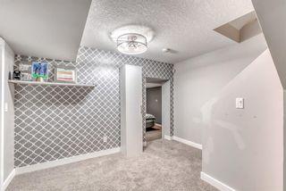 Photo 38: 3359 OAKWOOD Drive SW in Calgary: Oakridge Detached for sale : MLS®# A1145884