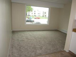 Photo 19: 8349 29 Avenue in Edmonton: Zone 29 Townhouse for sale : MLS®# E4247069