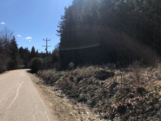 Photo 4: PLA 6810 Northeast 46 Street in Salmon Arm: Canoe Vacant Land for sale : MLS®# 10179387