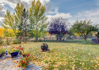 Main Photo: 143 Douglasbank Drive SE in Calgary: Douglasdale/Glen Detached for sale : MLS®# A1137861