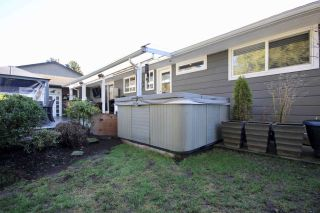 Photo 13: 5595 GROVE Avenue in Delta: Hawthorne House for sale (Ladner)  : MLS®# R2535639