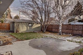 Photo 30: 611 WOODSWORTH Road SE in Calgary: Willow Park Detached for sale : MLS®# C4216444