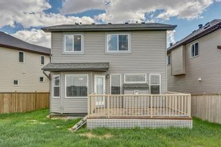 Photo 34: 51 Skyview Springs Cove NE in Calgary: Skyview Ranch Detached for sale : MLS®# C4186074