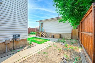 Photo 42: 639 TEMPLESIDE Road NE in Calgary: Temple Detached for sale : MLS®# A1136510
