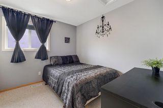 Photo 21: 82 Citadel Mesa Close NW in Calgary: Citadel Detached for sale : MLS®# A1073276