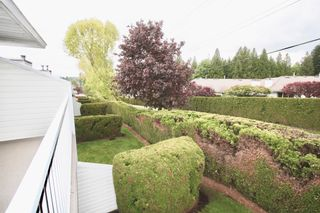 Photo 29: 52 3054 Trafalgar Street in Abbotsford: Central Abbotsford Townhouse for sale : MLS®# R2578031