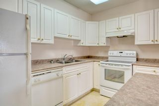 Photo 8: 3117 6818 Pinecliff Grove NE in Calgary: Pineridge Apartment for sale : MLS®# A1069420