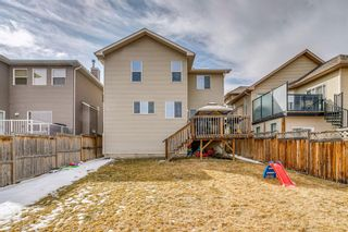 Photo 36: 134 Silverado Ponds Way SW in Calgary: Silverado Detached for sale : MLS®# A1089062