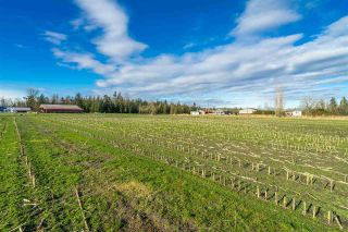Photo 16: LT.2 232 STREET in Langley: Salmon River Land for sale : MLS®# R2532238