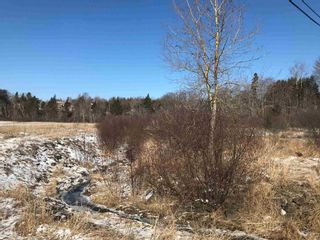 Photo 2: Lot 1-87 Old Court House Branch Road in Valley: 104-Truro/Bible Hill/Brookfield Vacant Land for sale (Northern Region)  : MLS®# 202105308