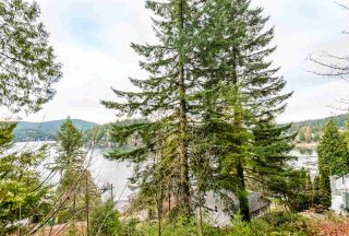 Photo 9: 2691 PANORAMA Drive in North Vancouver: Deep Cove Land for sale : MLS®# R2535182