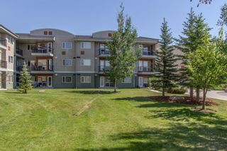 Photo 17: 328 69 Springborough Court SW in Calgary: Springbank Hill Apartment for sale : MLS®# A1124627