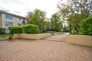 Photo 29: 312 2144 Paliswood Road SW in Calgary: Palliser Apartment for sale : MLS®# A1057089