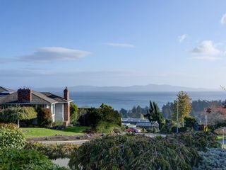 Photo 49: 4870 Sea Ridge Dr in : SE Cordova Bay House for sale (Saanich East)  : MLS®# 859446