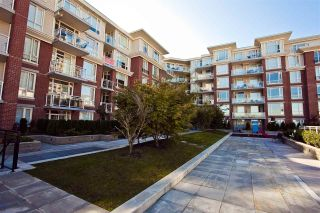 """Photo 19: 513 4078 KNIGHT Street in Vancouver: Knight Condo for sale in """"KING EDWARD VILLAGE"""" (Vancouver East)  : MLS®# R2154566"""