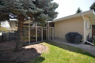 Photo 28: 10419 2 Street SE in Calgary: Willow Park Detached for sale : MLS®# C4296680