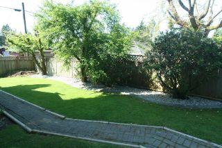 Photo 11: 2665 Violet Street in North Vancouver: Blueridge NV House for sale : MLS®# V768163