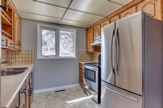 Photo 15: 144 Marbrooke Circle NE in Calgary: Marlborough Detached for sale : MLS®# A1098695