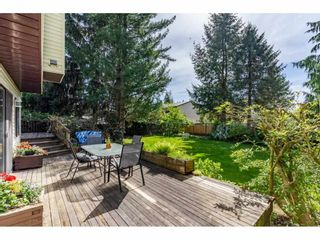 """Photo 35: 5693 246B Street in Langley: Salmon River House for sale in """"Strawberry Hills"""" : MLS®# R2581295"""