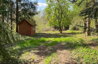 Photo 28: 27875 LOUGHEED Highway in Maple Ridge: Whonnock House for sale : MLS®# R2570130