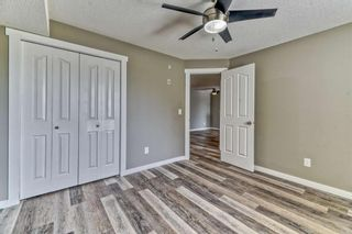 Photo 16: 337 1717 60 Street SE in Calgary: Red Carpet Apartment for sale : MLS®# A1067174