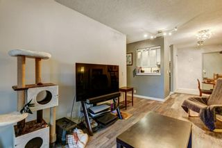 Photo 13: 4P 525 56 Avenue SW in Calgary: Windsor Park Apartment for sale : MLS®# A1123040