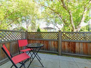 Photo 14: 1 1680 Ryan St in VICTORIA: Vi Oaklands Condo for sale (Victoria)  : MLS®# 816073