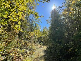 Photo 38: Lot 7879 HIGHWAY 31 in Kaslo: Vacant Land for sale : MLS®# 2461475