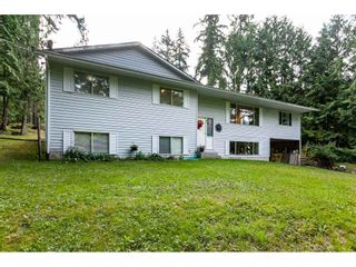 Photo 26: 10864 GREENWOOD Drive in Mission: Mission-West House for sale : MLS®# R2484037