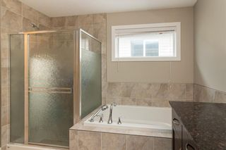 Photo 22: 353 WALDEN Square SE in Calgary: Walden Detached for sale : MLS®# C4208280