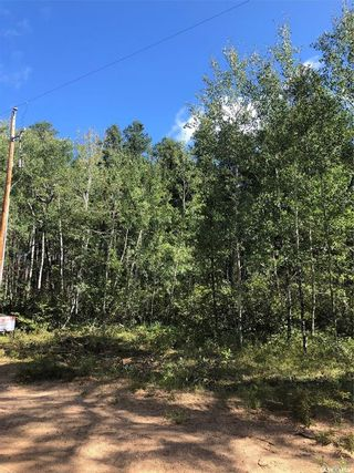 Photo 3: Ridge Road Dr in Hudson Bay: Lot/Land for sale : MLS®# SK842738